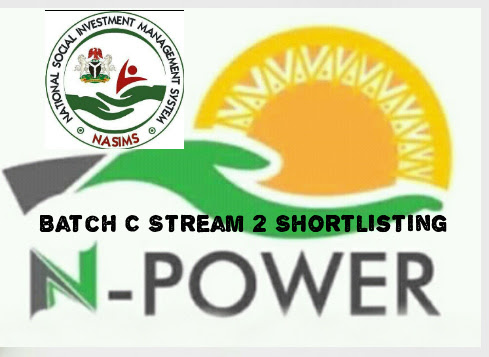N Power Portal: Federal Government Kick-Starts N Power Batch C, See Details